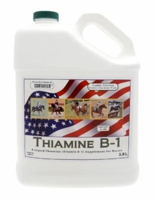 EQUINE AMERICA Thiamine B1 (płyn) - suplement dla koni w stanie stresu, które utraciły apetyt 3,8 l