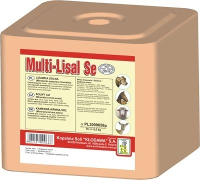 KŁODAWA Lizawka solna Multi Lisal SE (z selenem) 10 kg