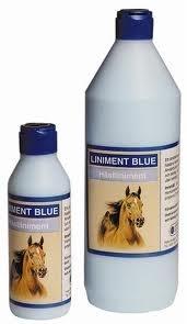 BIOFARMAB Eclipse Blue - HORSE GEL żel rozgrzewający 1000 ml