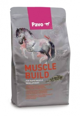 PAVO Muscle Build 3000 g