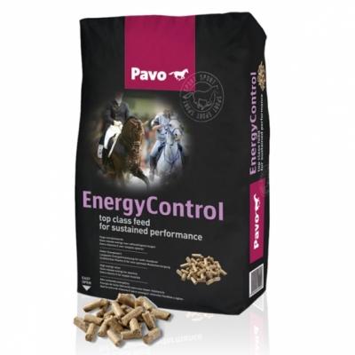 Pavo Energy-Control